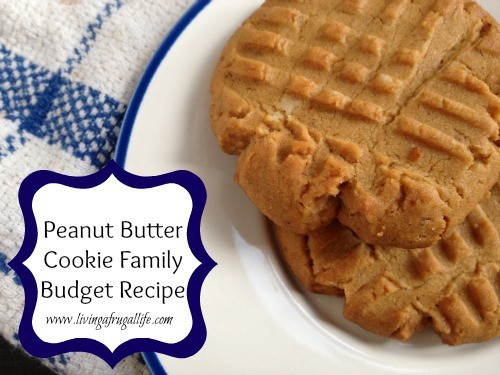 Peanut Butter Cookie Family Budget Recipe