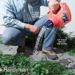 Make Your Own Watering Can From a Laundry Detergent Bottle