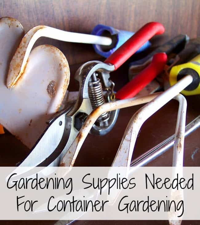 There are many gardening supplies that can be purchased for gardening. Here are 8 things you must have to make the most successful container garden. Includes plant containers, hand tools, and seeds and soil.