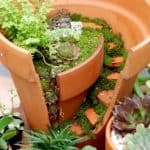 Frugal Fairy Garden