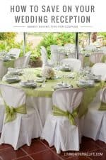 Check out these tips to help you have a money saving wedding reception. Great ideas to save where it is least important to the quality of your reception.