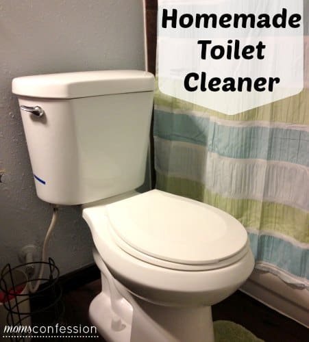Natural and Easy Homemade Toilet Cleaner