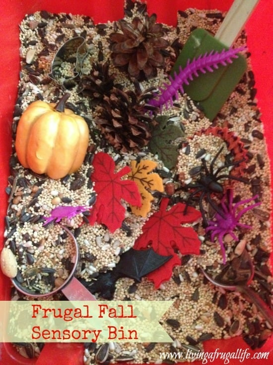 Dollar Store DIY: Fall Sensory Bin