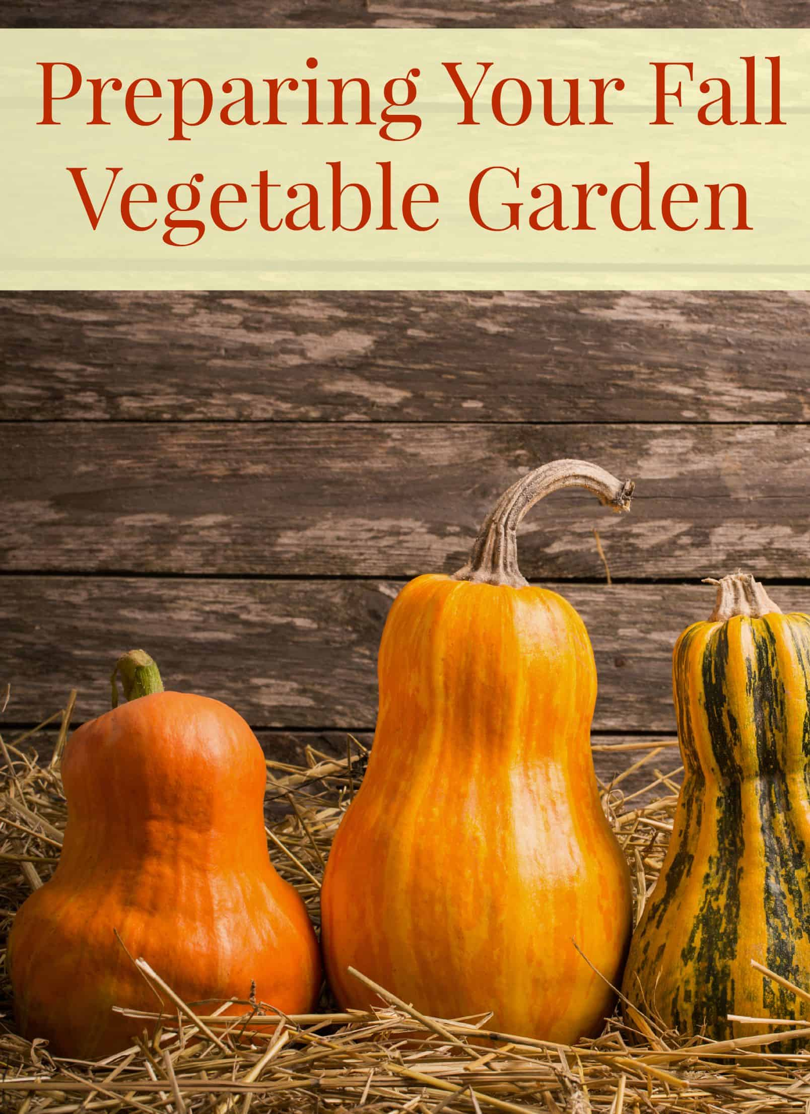 Gardening Tips To Help You Prepare Your Fall Vegetable Garden