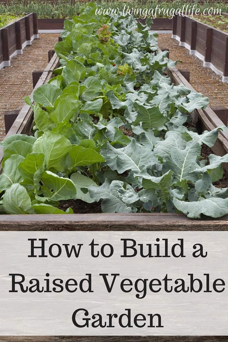 How to make a raised garden for Creating a vegetable garden