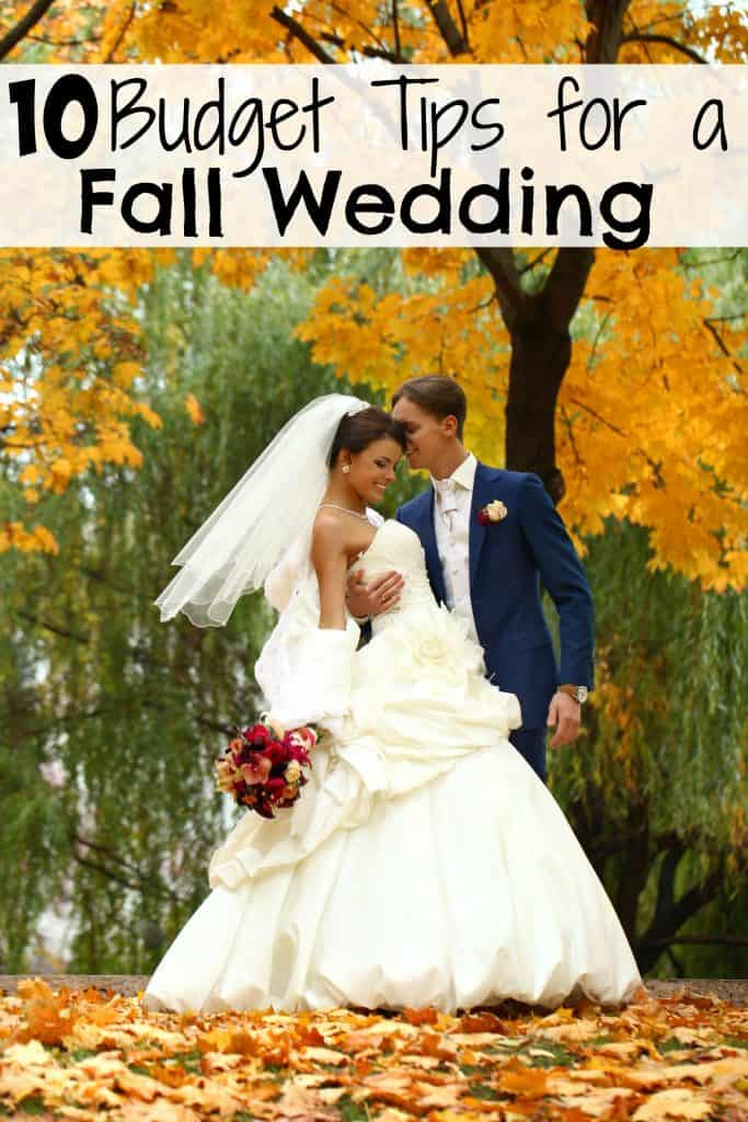 Bride and groom standing in a fall scene with trees and grass for their wedding.