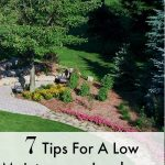 7 Tips For A Low Maintenance Landscape