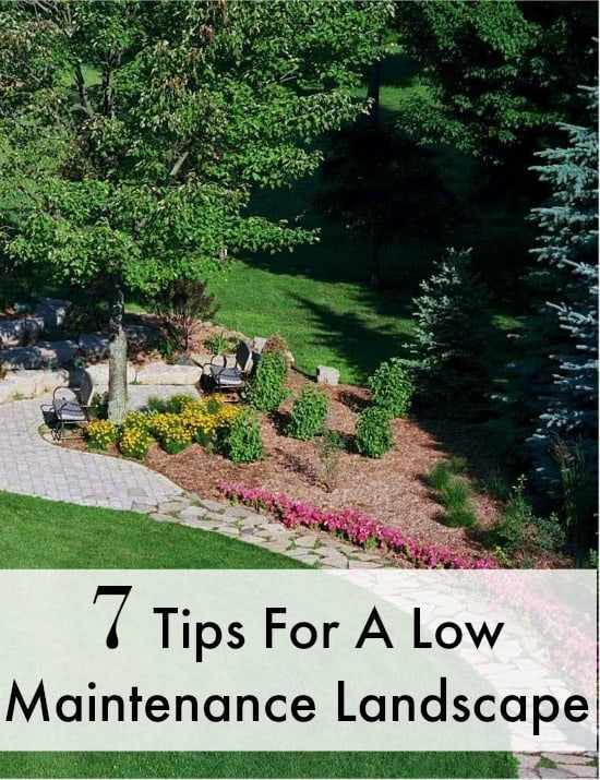 Are you looking for tips to make a low maintenance landscape? These tips will teach you the essentials to make your job easier and your soil richer!