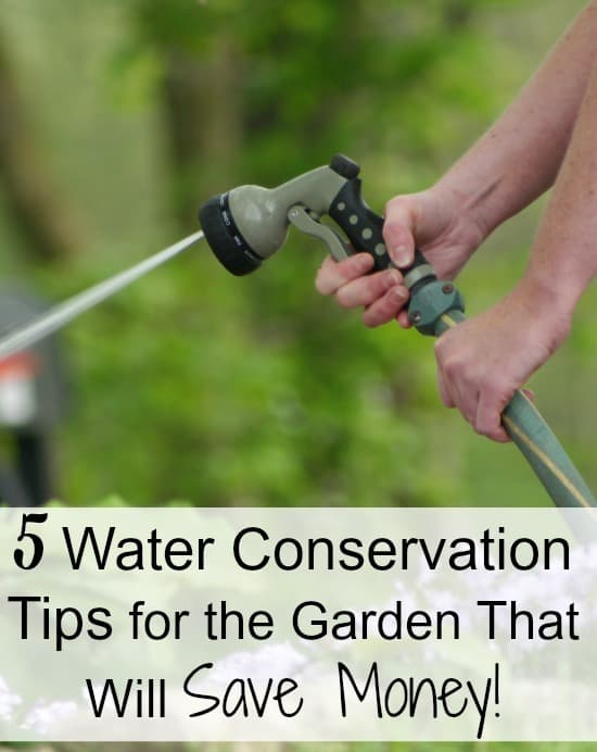 5 water conservation tips for the garden - Money saving tips in gardening ...